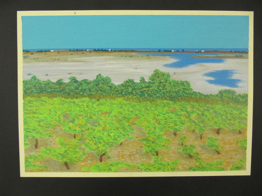 9082 40 cm x 27 cm Ölkreide auf Papier