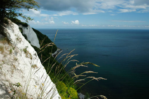 Chalk Cliffs of Rügen, Victoria Sight, overlook, National Parks in Germany