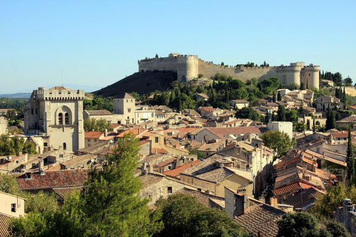Vue d'ensemble de Villeneuve-lez-Avignon