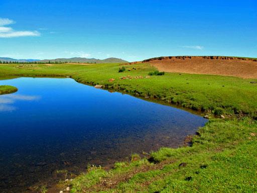 überall noch die Wasser-Reste der vorangegangenen Regenperiode
