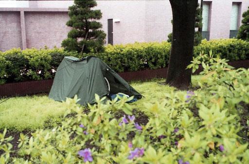 am Rande der Hecke fiel mein Zelt kaum auf