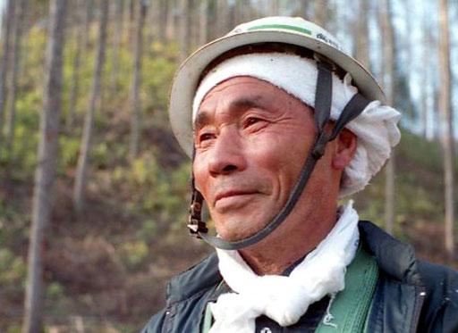 ein Holzfäller - einfühlsam und kompetent