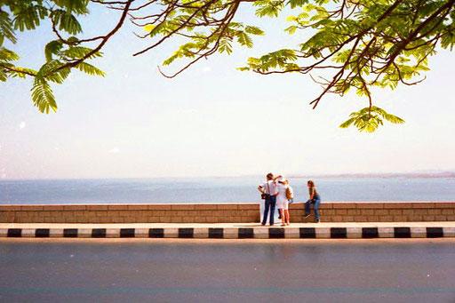 Blick vom Nasserdamm hinaus auf die Nasser-See
