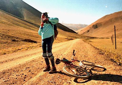 tibetischer Hirte - von oben kommt Gerhard