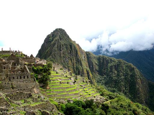 die Südterassen am Machu Picchu...