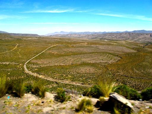 mit dem Bus von Puno nach Arequipa - 260 km durch die Sierra Sallnas Blanca