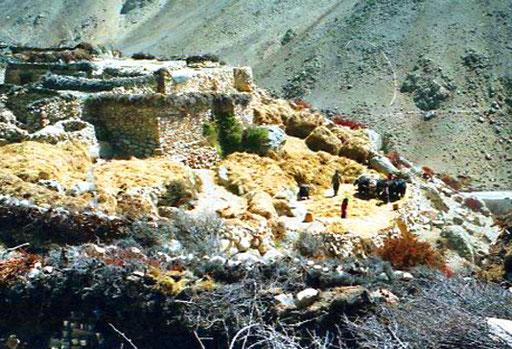 tibetisches Bauernhaus auf einem gesichertem Stein-Schutt-Kegel