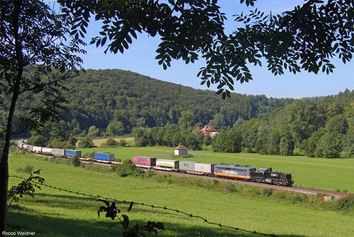 MRCE Dispo 275 009 und Hectorrail 151 133 mit DGS 69008 Basel SBB RB - Schwetzingen