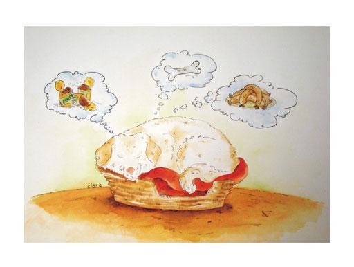 Eine wuschelige Hündin gezeichnet als Portrait. Die Hündin liegt in einem viel zu kleinen Korb. Der Hund träumt vom Essen