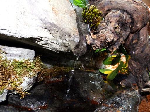 Wasserlauf/ Brunnen mit Wasserbecken