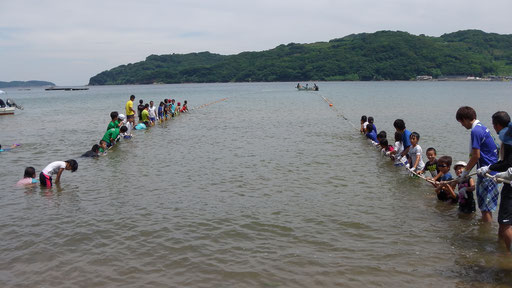 平成29年地曳網漁業体験 - 浜を...