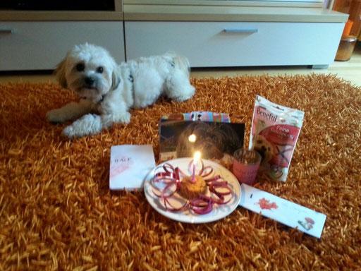 ... mein 1. Geburtstag ... 1J