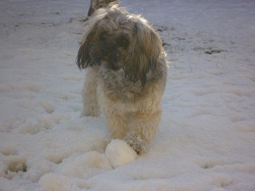 ... mein erster Schnee ... 8 Mo