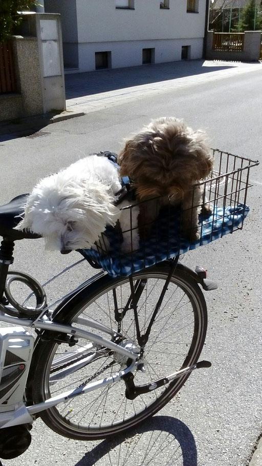 ... Rad fahren ist cool ... 4,6J
