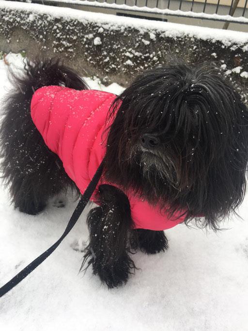 ... es schneit ... 5,2J