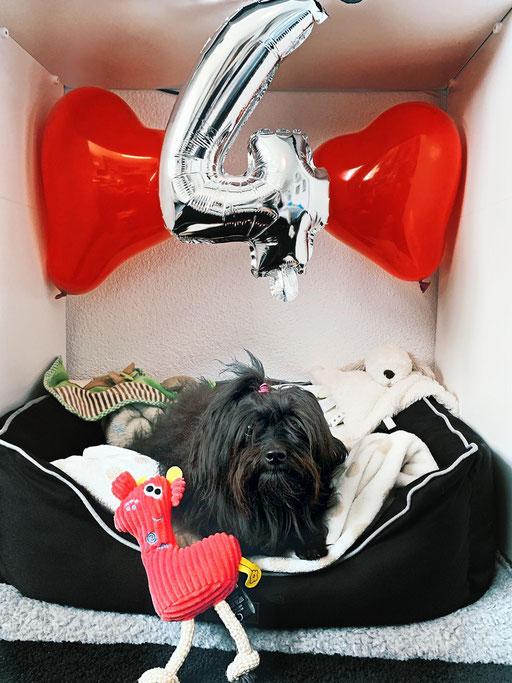 ... feier meinen 4. Geburtstag ... 4J