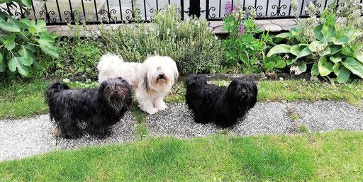 ... im Garten bei meiner Mama Hannah & meiner Schwester Darya ... 4,7J