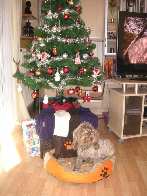 ... Weihnachten 2015 ... 3,3J
