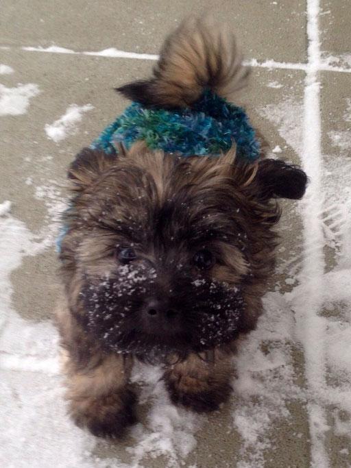 ... mein erster Schnee ... 10W