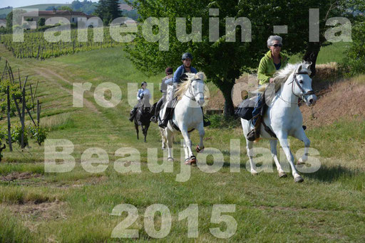 La Route Du Beaujolais 2015 - dimanche 24 mai 2015 - parcours en matinée - 16