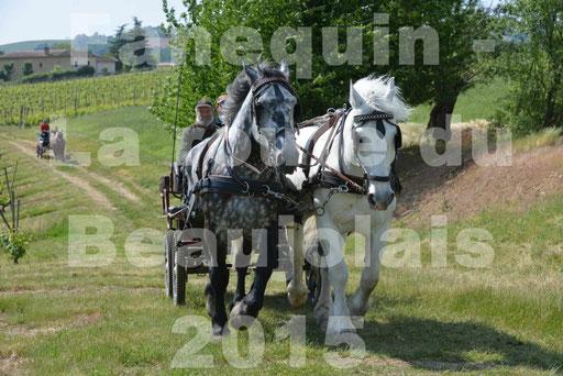 La Route Du Beaujolais 2015 - dimanche 24 mai 2015 - parcours en matinée - 77