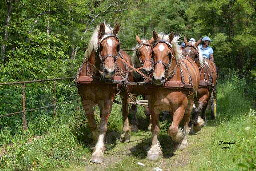 La Route Du Beaujolais 2015 - samedi 23 mai 2015 - parcours en après midi - 63