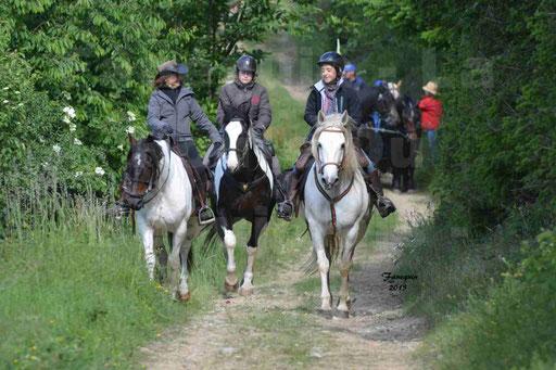La Route Du Beaujolais 2015 - samedi 23 mai 2015 - parcours en matinée - 13