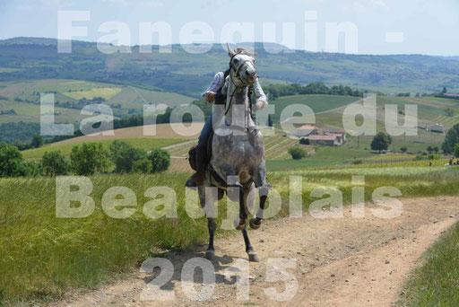 La Route Du Beaujolais 2015 - dimanche 24 mai 2015 - parcours en matinée - deuxième partie - 28