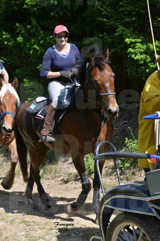 La Route Du Beaujolais 2015 - samedi 23 mai 2015 - parcours en matinée - 41