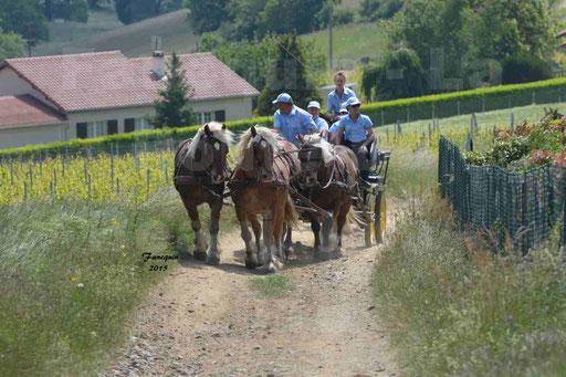 La Route Du Beaujolais 2015 - dimanche 24 mai 2015 - parcours en matinée - deuxième partie - 22