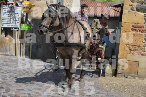 La Route Du Beaujolais 2015 - dimanche 24 mai 2015 - parcours et arrivée place d'un village - 39