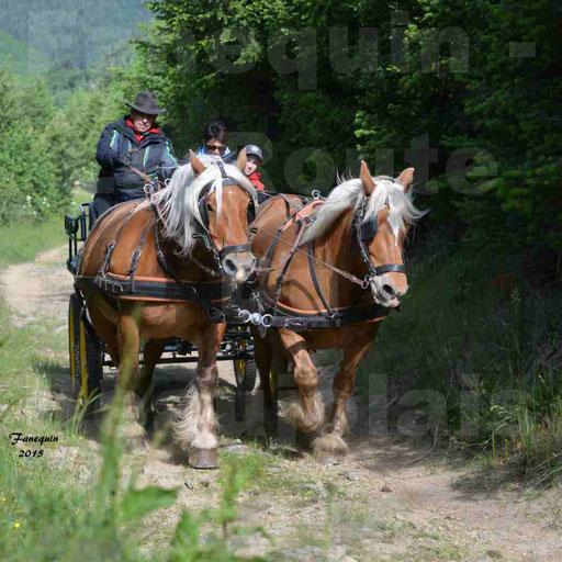 La Route Du Beaujolais 2015 - samedi 23 mai 2015 - parcours en matinée - 05