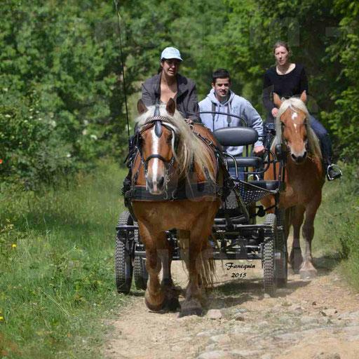 La Route Du Beaujolais 2015 - samedi 23 mai 2015 - parcours en matinée - 71