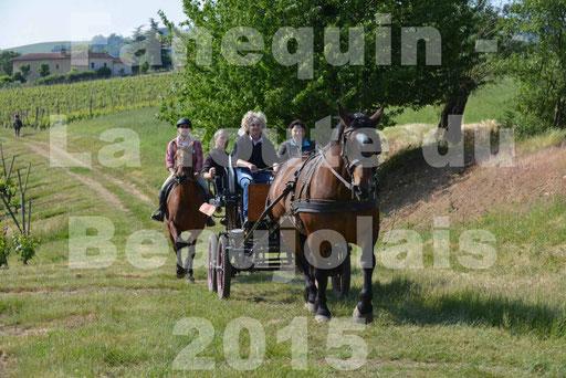 La Route Du Beaujolais 2015 - dimanche 24 mai 2015 - parcours en matinée - 34