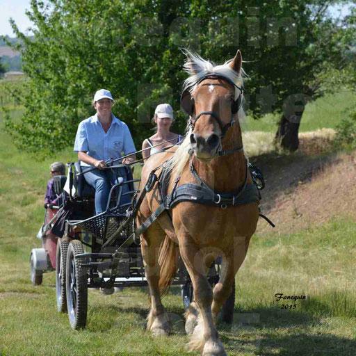 La Route Du Beaujolais 2015 - dimanche 24 mai 2015 - parcours en matinée - 72