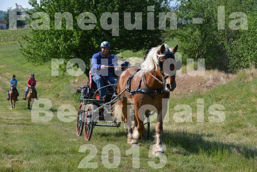La Route Du Beaujolais 2015 - dimanche 24 mai 2015 - parcours en matinée - 13