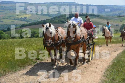 La Route Du Beaujolais 2015 - dimanche 24 mai 2015 - parcours en matinée - deuxième partie - 38