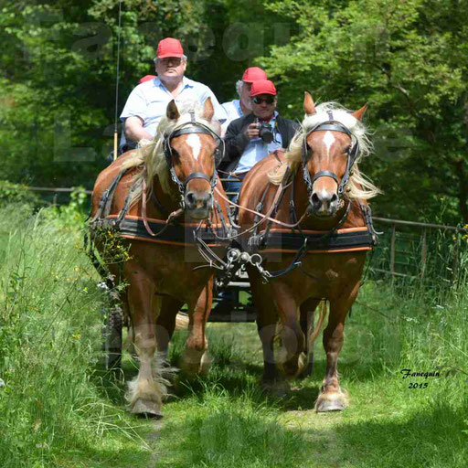 La Route Du Beaujolais 2015 - samedi 23 mai 2015 - parcours en après midi - 32