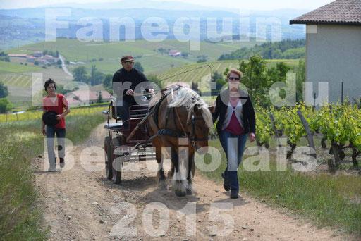 La Route Du Beaujolais 2015 - dimanche 24 mai 2015 - parcours en matinée - deuxième partie - 06