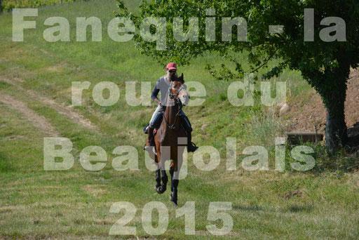 La Route Du Beaujolais 2015 - dimanche 24 mai 2015 - parcours en matinée - 11
