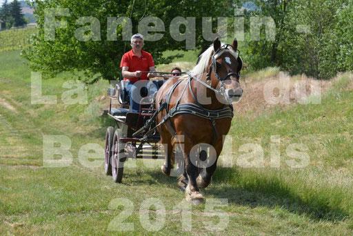 La Route Du Beaujolais 2015 - dimanche 24 mai 2015 - parcours en matinée - 78