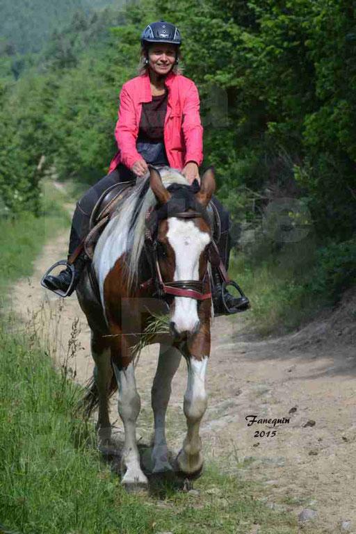 La Route Du Beaujolais 2015 - samedi 23 mai 2015 - parcours en matinée - 45