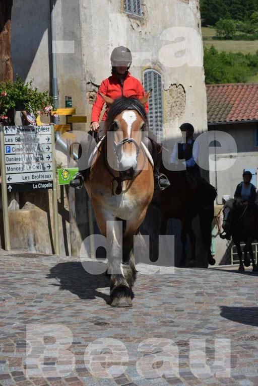 La Route Du Beaujolais 2015 - dimanche 24 mai 2015 - parcours et arrivée place d'un village - 65