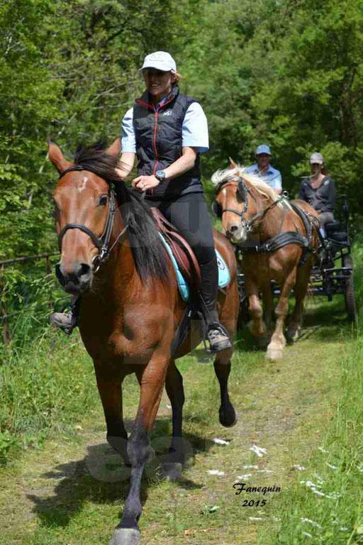 La Route Du Beaujolais 2015 - samedi 23 mai 2015 - parcours en après midi - 65