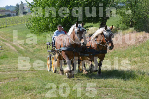 La Route Du Beaujolais 2015 - dimanche 24 mai 2015 - parcours en matinée - 38