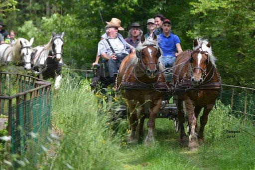 La Route Du Beaujolais 2015 - samedi 23 mai 2015 - parcours en après midi - 35