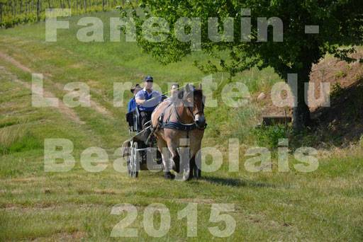 La Route Du Beaujolais 2015 - dimanche 24 mai 2015 - parcours en matinée - 39