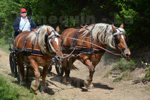 La Route Du Beaujolais 2015 - samedi 23 mai 2015 - parcours en matinée - 48