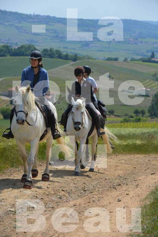 La Route Du Beaujolais 2015 - dimanche 24 mai 2015 - parcours en matinée - deuxième partie - 12