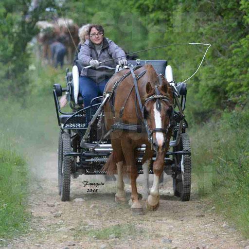 La Route Du Beaujolais 2015 - samedi 23 mai 2015 - parcours en matinée - 64